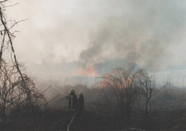 Moorbrand